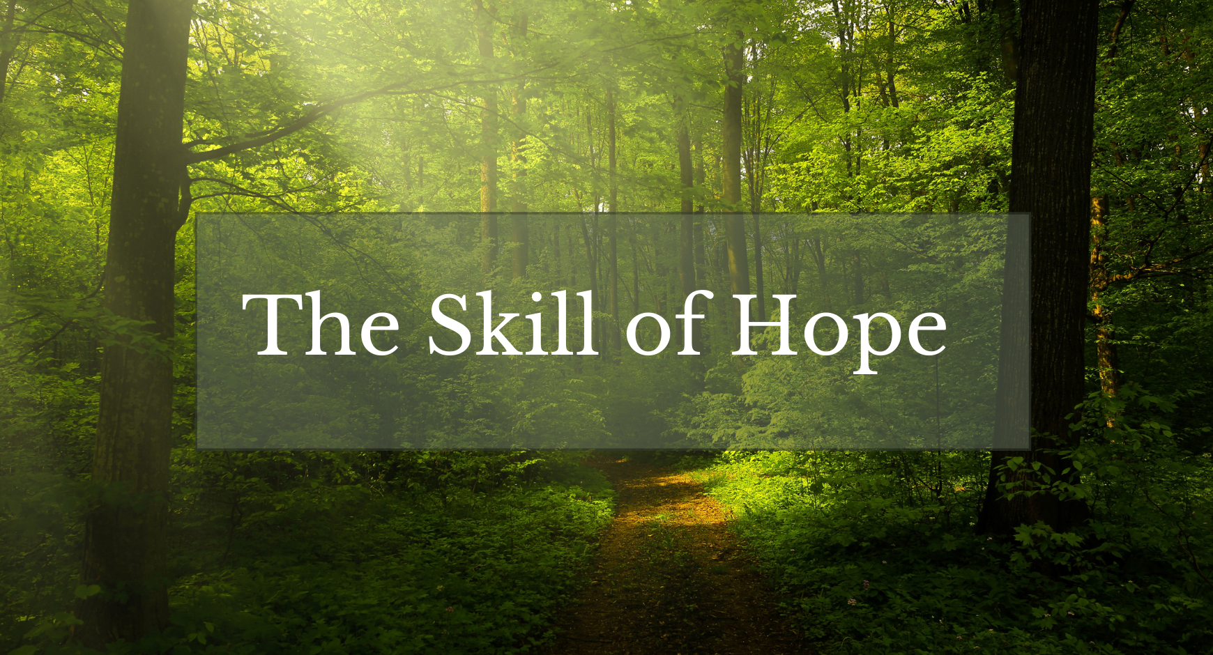 """A dark forest path with a beam of sunlight behind the words """"The Skill of Hope"""""""